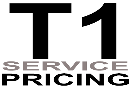 data-voice-solutions.com: t1 service pricing, city to city t1-ds1 line pricing  for Pearl River, NY, point to multipoint t1 line pricing  for Pearl River, NY,  plus