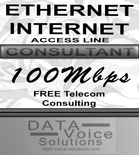 data-voice-solutions.com: ethernet internet access line consultant 100MB,  Unmanaged Metro Fiber Ethernet Internet Access Line 350M  for Brentwood, NY, Unmanaged Metro Fiber Ethernet Internet Access Line 450 Megs  for Brentwood, NY,  plus
