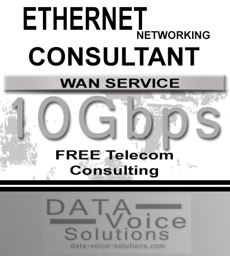data-voice-solutions.com: ethernet networking consultant for links of 10 Gb,  Business Ethernet Networking Consultant (Fiber) 45 Meg  for Plainview, NY, Ethernet Networking (Fiber) 4000Mb/s  for Plainview, NY,  plus