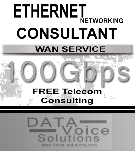 data-voice-solutions.com: ethernet networking consultant for links of 100 Gb,  Business Ethernet Networking Consultant (Copper) 850 Megs  for Lemoyne, PA, Managed Metro Fiber Ethernet Networking 800Mbps  for Lemoyne, PA,  plus
