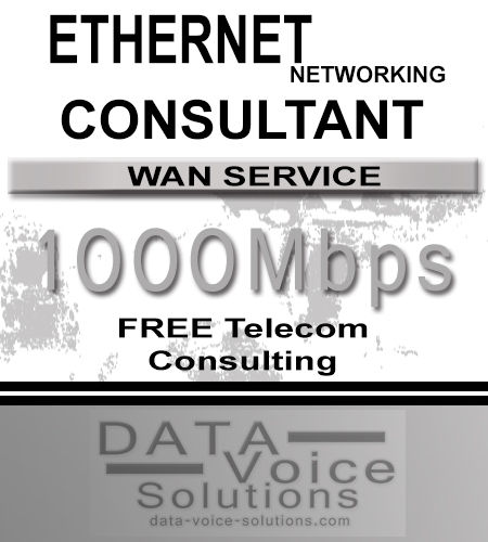 data-voice-solutions.com: ethernet networking consultant for links of 1000 Mb,  Ethernet Networking Consultant (Fiber) 100000Mb  for Pittsburgh, PA, Managed Metro Fiber Ethernet Networking 150 M  for Pittsburgh, PA,  plus