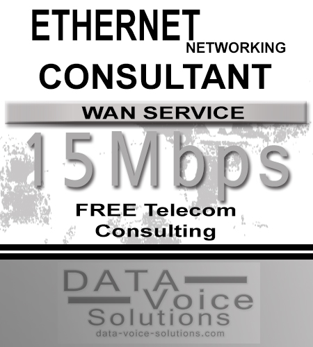 data-voice-solutions.com: ethernet networking consultant for links of 15 Mb,  Ethernet Networking (Copper) 750 Megs  for Elizabeth, PA, Business Metro Fiber Ethernet Networking Consultant 150 Mb/s  for Elizabeth, PA,  plus