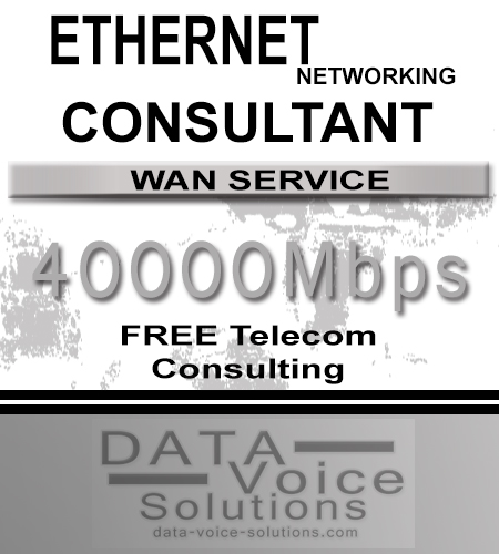 data-voice-solutions.com: ethernet networking consultant for links of 40000 Mb,  Commercial Ethernet Networking 70 Meg  for Jamaica, NY, Business Metro Fiber Ethernet Networking 45Megs  for Jamaica, NY,  plus