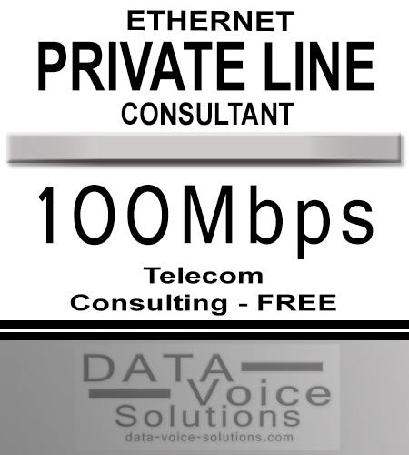 data-voice-solutions.com: ethernet private line consultant 100Mbps,  Commercial Ethernet Private Line (Copper) 350Mbps  for Henrietta, NY, Unmanaged Metro Fiber Ethernet Private Line 1000M  for Henrietta, NY,  plus