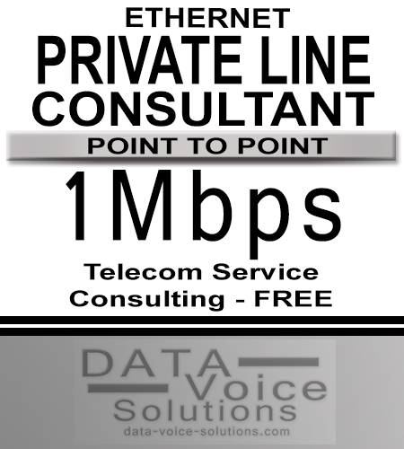 data-voice-solutions.com: ethernet private line consultant 1Mb, 