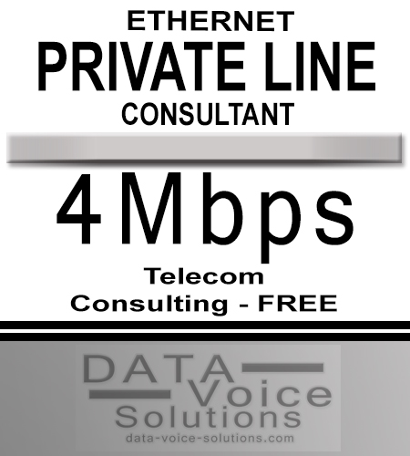 data-voice-solutions.com: ethernet private line consultant 4Mbps,  Business Ethernet Private Line Consultant 20 Gb  for Avondale, PA, Unmanaged Ethernet Private Line (Copper) 40 Gig  for Avondale, PA,  plus