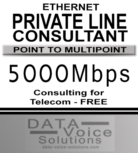 data-voice-solutions.com: ethernet private line consultant 5000-Mb,  Ethernet Private Line 550Megs  for Springville, NY, Business Ethernet Private Line (Fiber) 100G  for Springville, NY,  plus