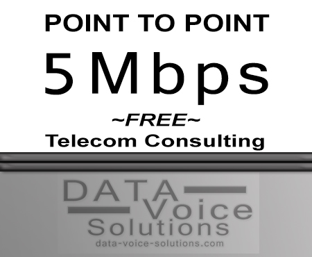 data-voice-solutions.com: ethernet service consultant point to point 5 M,  Ethernet Service Acquisition Consultant  for Telluride, CO, Ethernet Virtual Private Line Service  for Telluride, CO,  plus