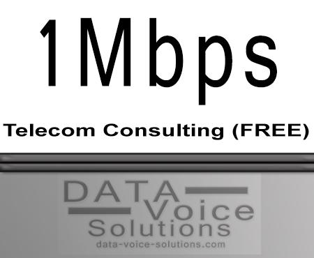 data-voice-solutions.com: ethernet service consultant 1 Mb,  Ethernet Virtual Private Line (EVPL) Service Consultant  for Gautier, MS, Metro Ethernet Network Service Consultant  for Gautier, MS,  plus