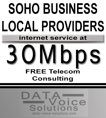 data-voice-solutions.com: 30M soho business local isp,  SOHO Commercial Metro Fiber Ethernet 35Mb  for Inkster, MI, SOHO Business Ethernet (Copper) 700Mbps  for Inkster, MI,  plus
