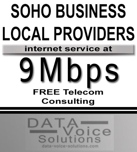 data-voice-solutions.com: 9M soho business local isp,  SOHO Commercial Metro Fiber Ethernet 10 Mb/s  for Hazel Park, MI, SOHO Business Ethernet (Fiber) 35Meg  for Hazel Park, MI,  plus
